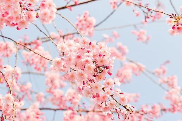 ストレッチが春の健康法。